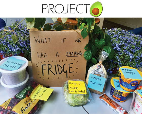 From Project Avocado to NYU FREEdge (Spring 2016- Spring 2017)